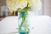 Flowers / by Katie Neilson