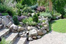 FRA garden