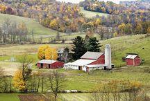 Amish Farms / by lori palmer