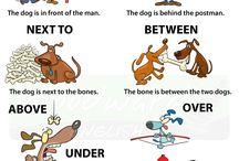 Use of English