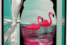 Flamingo Lingo Stampin' Up! Stamp Set Greeting Cards