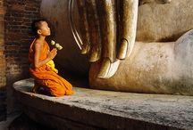 go Ayutthaya