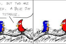 The Bird Feeder / Comic strips from The Bird Feeder web comic.