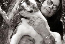 Hunde-Liebhaber / Menschen, die Hunde lieben