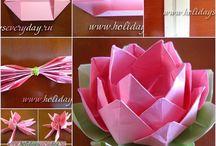 lotosvy kvet