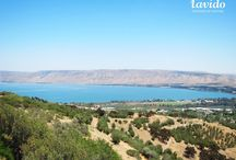 The historical Sea of Galilee / Each of Lavido products is made with thermal volcanic springs and purified waters from the historical Sea of Galilee.