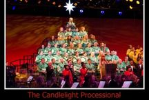 Epcot Holidays Around the World / Experience the magic of Disney holidays!  Enjoy Epcot's Holidays Around the World, Candlelight Processional, Holiday Illuminations and so much more.  There are special Disney dining opportunities, special shows and a chance to meet Santa too.