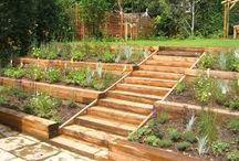 scale giardini