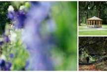 Scone Palace Gardens / 100 acres of stunning grounds open to visitors
