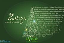 Evenimente de Craciun / Ce putem pregăti pentru petrecerile de Crăciun.