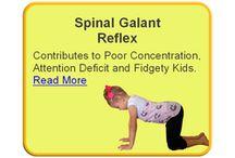Spinal Galant