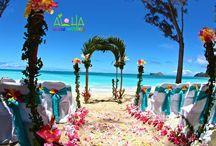 Hawaiin wedding/vacation 2015 / HAWAII