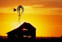 Rural scenes / Farmhouse at sunset