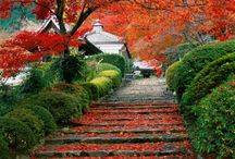 beautiful japan / by Kat Mannix