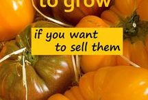 Money Making Homestead / Homesteading | Making money on a homestead | Profitable homesteading | You have animals, a garden and need them to pay for themselves! Ideas to get you going on how to make your homestead profitable
