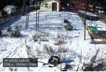 Outdoor: Winter Gardening / Wildlife...Gardening...Wintertime