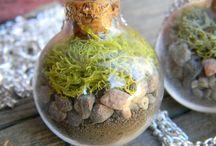 Mini jardim. / Aqui tenho a beleza do jardim em miniatura. Alguns de minha autoria.