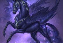 Miracle horses