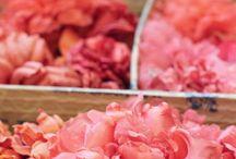 Silk Flowers / by Meg Ross