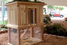 Chicken Coops I Like