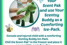 Scentsy & Arbonne Ideas / Home business