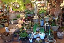 DIY with Campo de' Fiori / Home and garden ideas for decorative and architectural products and plants