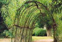 ::Zahrada garden