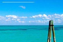 Travel Quotes | Frases de viaje / by Riviera Maya