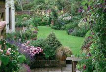 Gardens / Dreamy gardens
