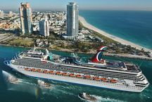 Port Canaveral Transportation / Port Canaveral Transportation and Shuttle Services is a company that not just lets you take a simple ride from Port Canaveral to Orlando International Airport Cruise, vice versa, but also lets you enjoy the amazing environment of Orlando.
