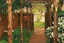 Teädgård