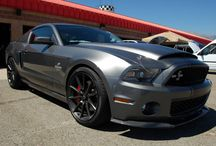 My Favorite Car Ford Shelby GT 500 Mustang