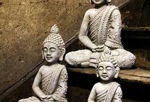 Buddhat / Harmoniaa