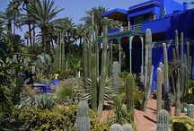 Gardens & Roof Terraces / Gardens and roof terraces we love. Places to relax, reflect and re-energise.