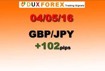 Daily Forex Profits Performance 04/05/16