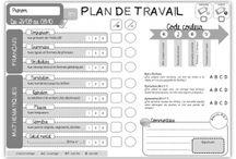 C3 - Plan de travail