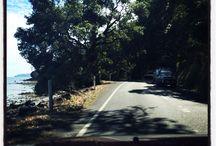 Coromandel camping and tramping.