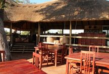Nehimba Safari Lodge - Hwange / Nehimba is situated in the centre of Hwange National Park in a large private concession. It is remotely nestled near the Nehimba seep which abounds with an array of wildlife and abundant bird species.