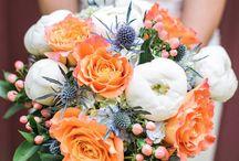 WEDDING TIPS & Photos