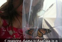 homeschool info / by Tamera Manns