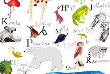 Illustrated Animals