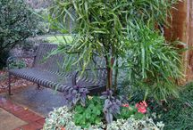 Landscape Ideas / Gardening Designs We Like