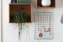 plants / beautiful plants, bringing a little of nature's magic indoors