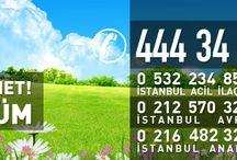 Bocek Ilaclama / Böcek ilaçlama hizmeti veren İstanbul İlaçlama firması evinizde sağlığı sizlerle buluşturuyor.