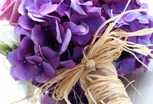 Wedding Flowers / by Katy Massey
