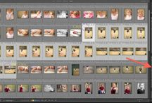 Lightroom / Adobe Lightroom tips for organizing and editing your digital photos