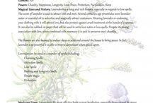 növénygyógy