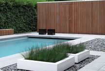 Contemporary pool gardens rick