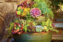 Color Your Containers