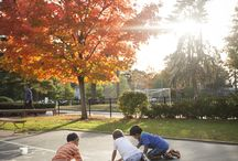 Fall at Fessy / The autumn is one of the most beautiful times of year at The Fessenden School.
